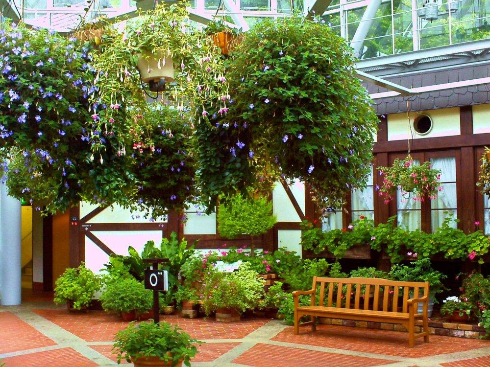 เรือนกระจกที่อยู่ตรงกลางของ Kobe Nunobiki Herb Gardens เหมาะแก่การพักผ่อนเติมพลังด้วยสีเขียวของนานาพรรณพืช