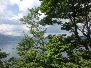 아오모리의 여름 중 아름다운 대조