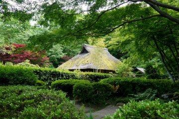 Ogino House in Yakushiike Park