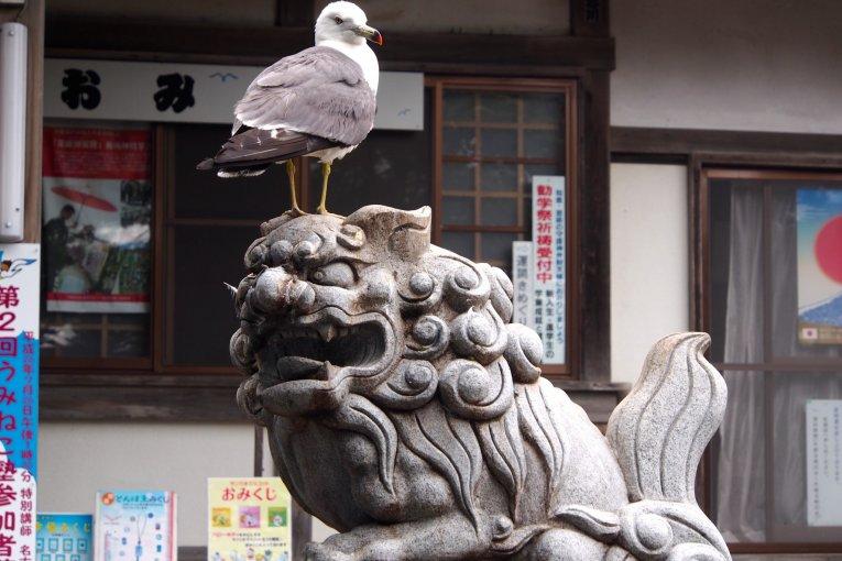 ศาลเจ้าคะบุชิมะบนเกาะนกนางนวล