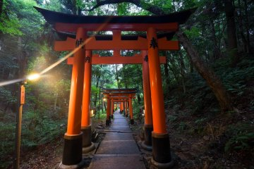 <p>As the sun goes down, the lights are slowly lighted up to illuminate the path.&nbsp;</p>