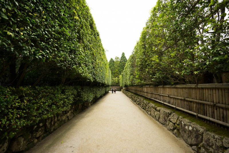 <p>The walk to the entrance is quite spectacular.</p>