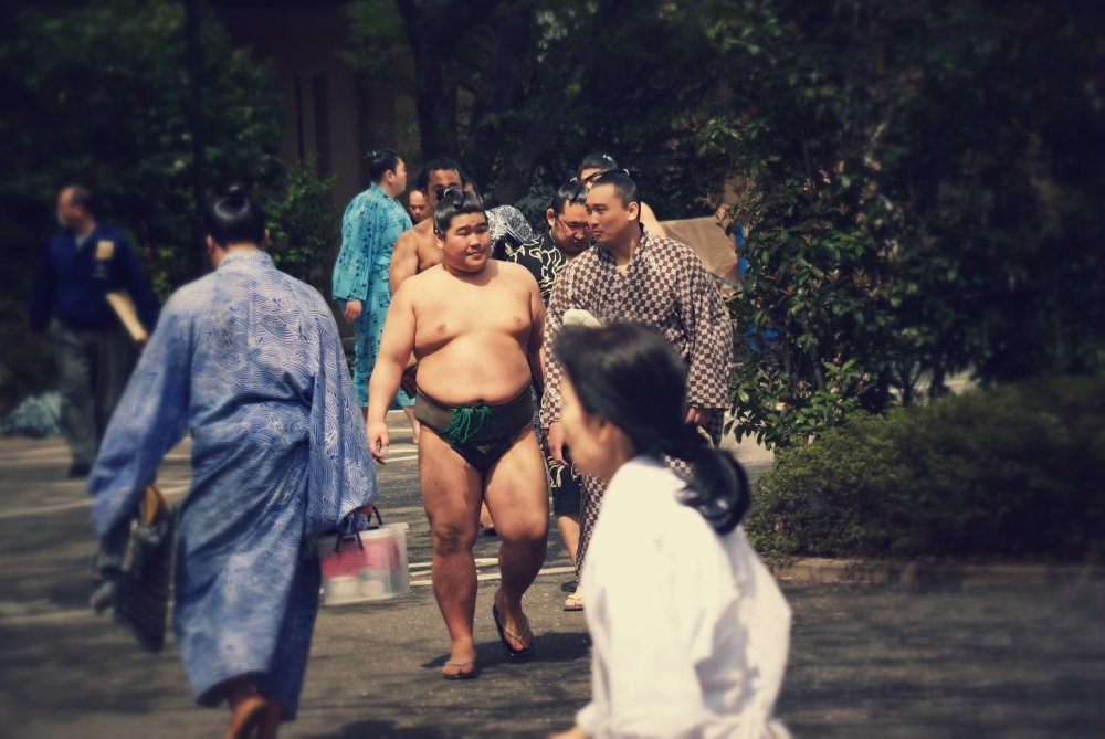 The sumo wrestlers arrive early and mingle with fans as the stroll through Yasukuni Shrine towards the arena