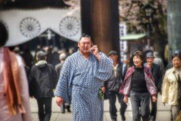 "Yasukuni Shrine ""Honozumo"" Sumo"