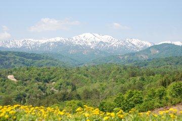 <p>The Iide mountain range</p>