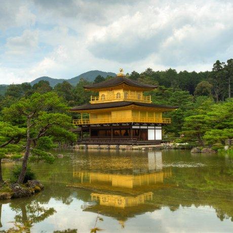 Chùa Kinkakuji vào mùa hè