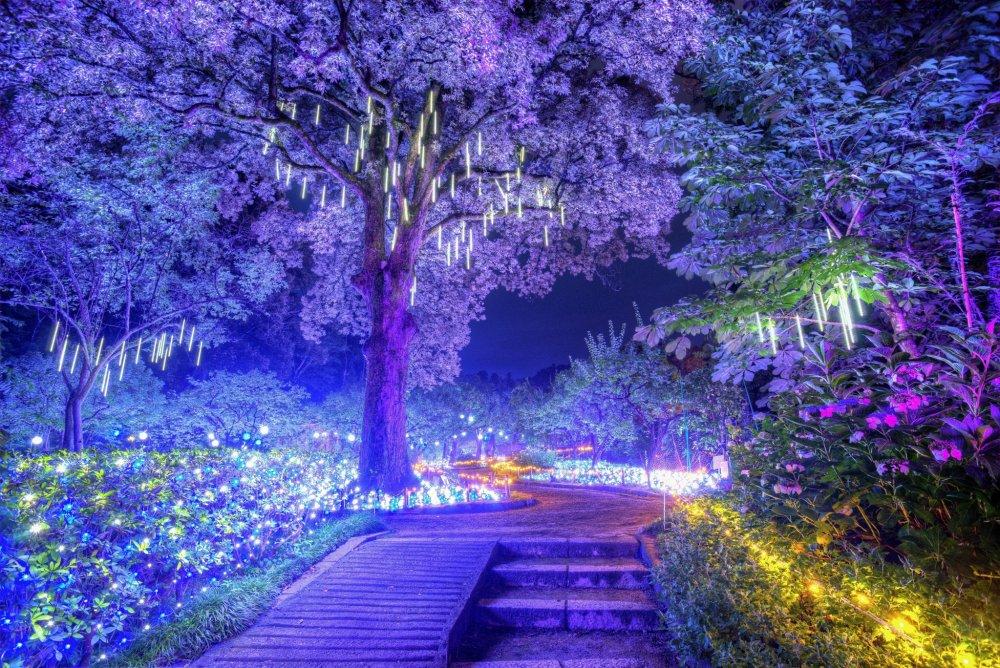 Illuminara: Manyo Botanical Garden - 奈良 - Japan Travel - 日本旅游大搜索