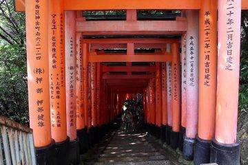 เดินชมรอบ ๆ ศาลเจ้าฟุชิมิ อินะริ