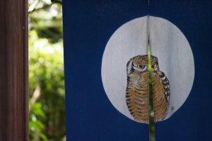 Lucky cats to lucky owls – just one of many entrances to a garden cafe