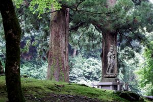 Along the walkway leading towards the entrance gate of Eiheiji Temple, the statue of Goddess of Mercy stands silently in a green forest