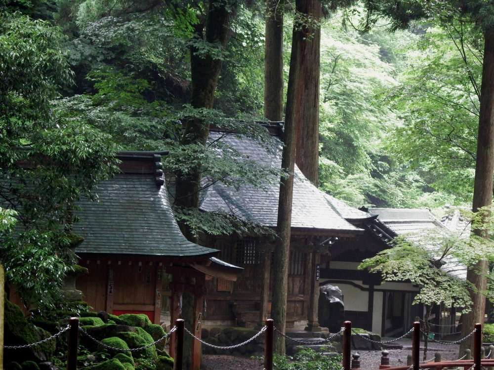 Small shrines tucked into deep woods along the river