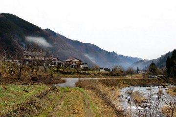 Daikon Hunting in Meiho, Gifu