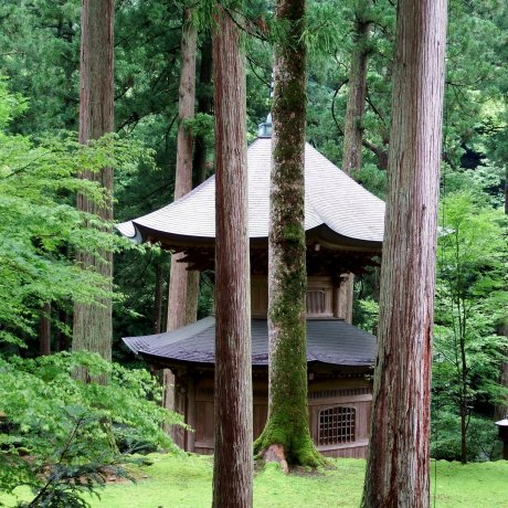 Graceful Pagoda of Eiheiji Temple