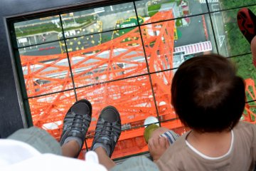 <p>Standing on the &quot;Lookdown Window&quot;</p>