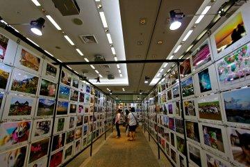 ฟูจิฟิล์มแสควร์(FujiFilm Square)