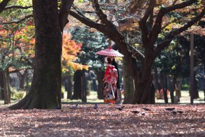 Japanese couple strolling around in the park
