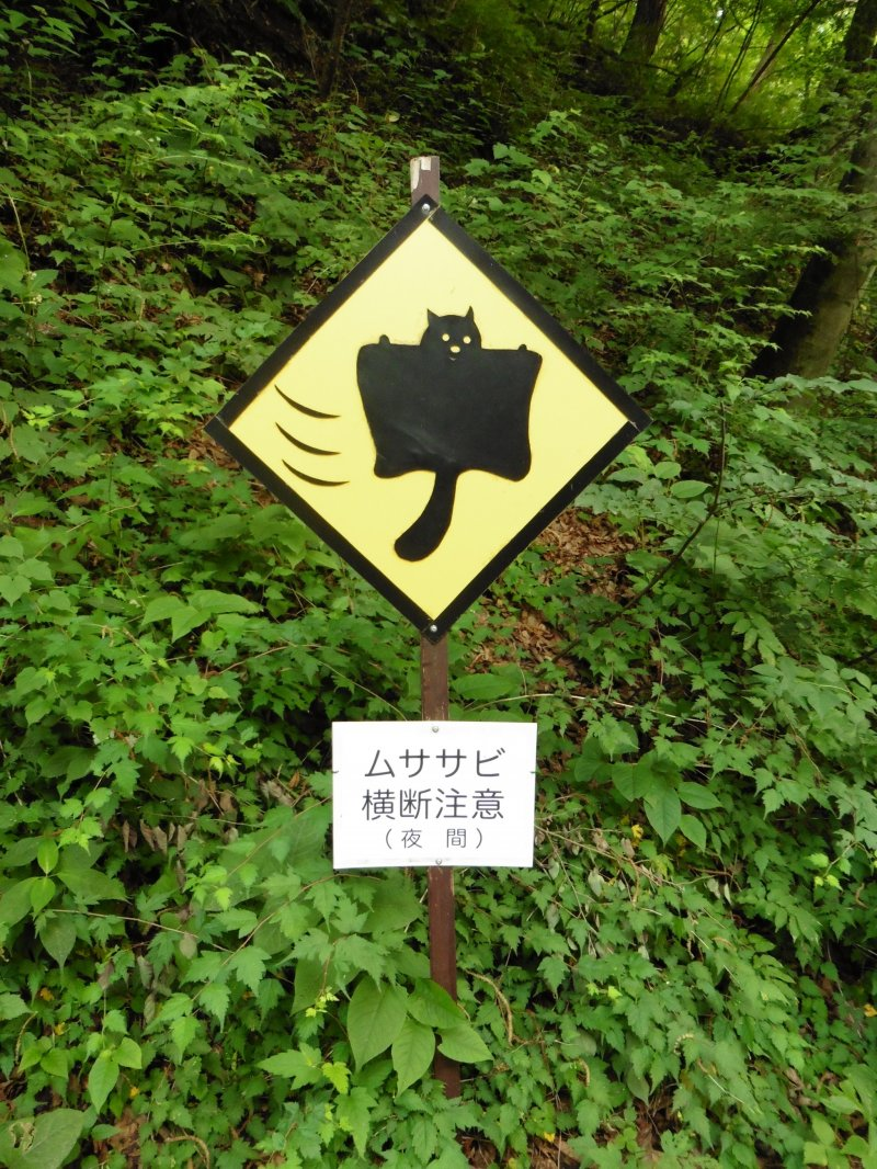 <p>Beware, flying squirrels crossing. Only two of this road sign exist in the world... and they can both be found here!</p>