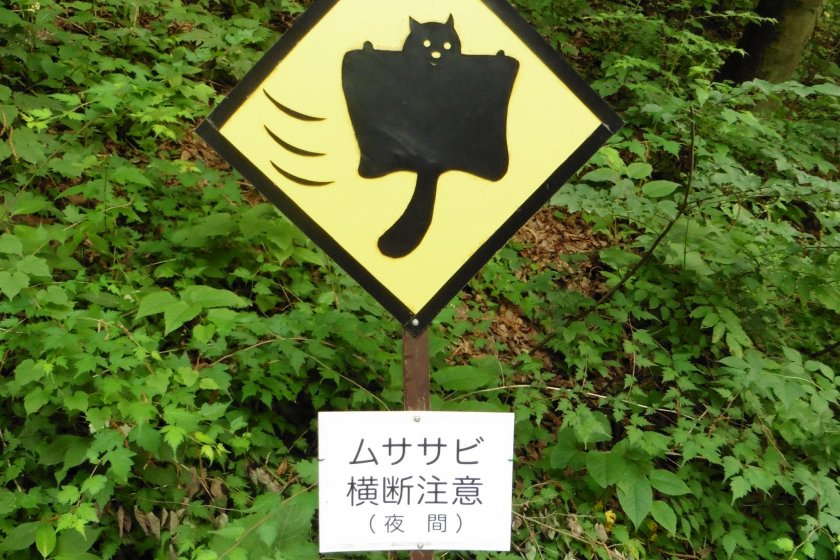 Beware, flying squirrels crossing. Only two of this road sign exist in the world... and they can both be found here!