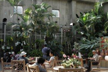 Relaxing in the atrium, Ran No Yakata.