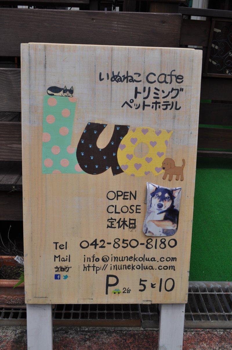 Rescue Cat and Dog Café Lua - Machida, Tokyo - Japan Travel
