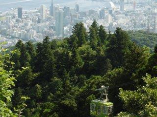 Cáp treo Maya và thành phố Kobe ở phía sau