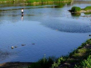 Vào mùa hè sông là nơi để làm dịu mát cho tâm hồn