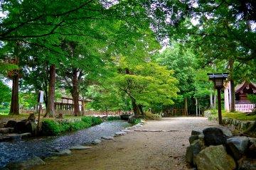 <p>Nara-no-ogawa&nbsp;stream</p>