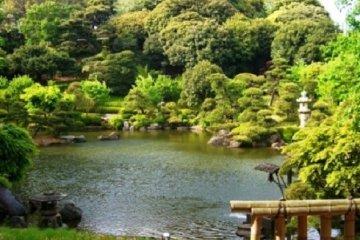 池上本門寺の小堀遠州作「松濤園」が特別公開