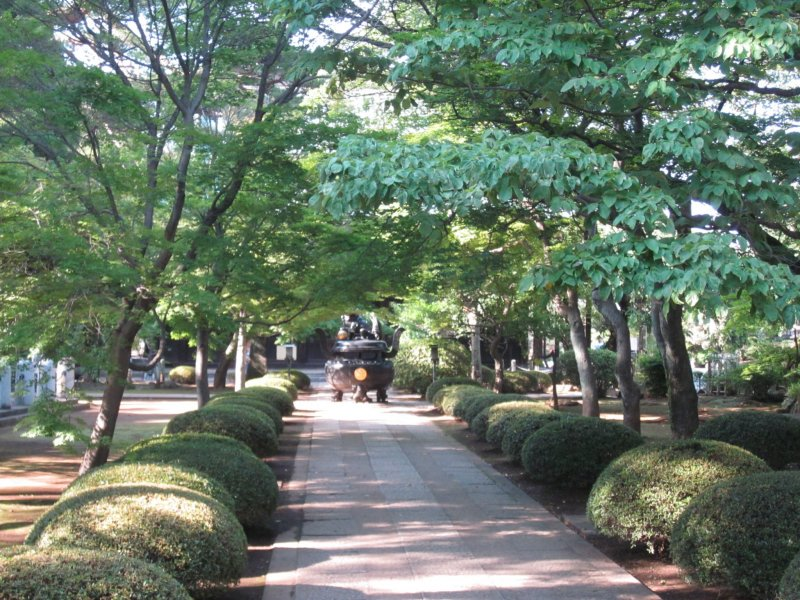 <p>The first walkway upon entering the temple grounds, filled with lush greenery.</p>