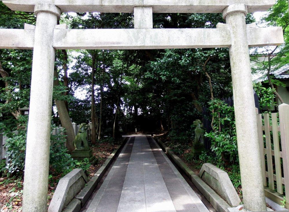 Ngay khi bạn bước vào cổng chính torii của Đền Kehi Jingu, bạn sẽ thấy bên trái cổng torii bằng đá nhỏ và con đường dẫn đến một trong những ngôi đền nhỏ trên khu đất