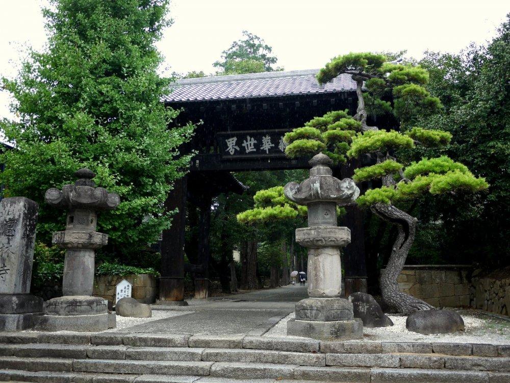 Lentera batu dan pohon pinus indah berdiri di depan gerbang Erinji