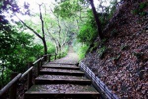 「花換えの小道」と言いつつ、花はどこにも見当たらない。山頂まで階段が延々と続く