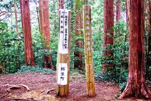 The peak of Ootaka-tori Mountain (大高取山)