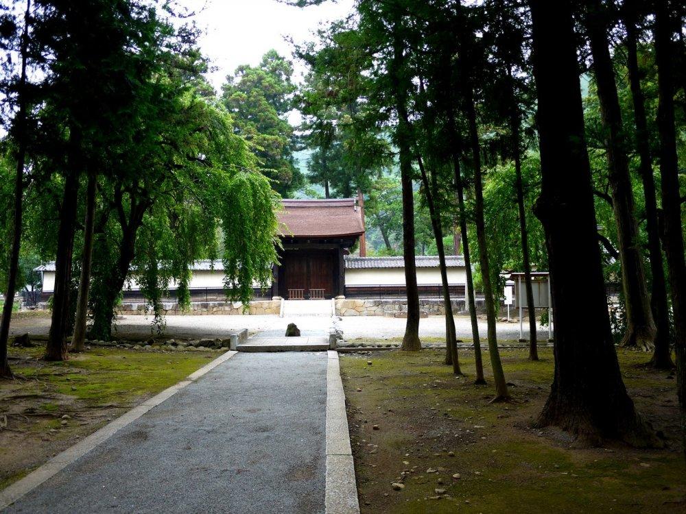 Lối đi từ cổng vào có rất nhiều cây xanh ở hai bên