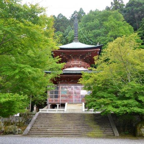 Dendengu Shrine & Horinji Temple