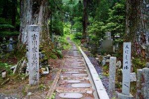 Mengikuti jalanan yang kuno ini