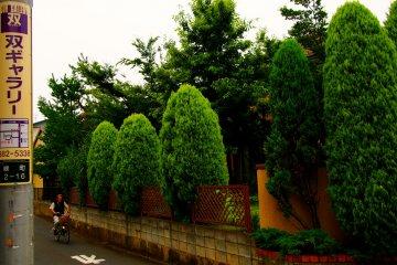 <p>Tree lined suburban streets</p>