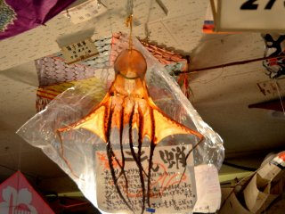 A dried Ika (squid) kite.