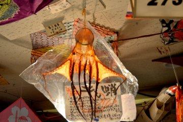 <p>A dried Ika (squid) kite.</p>