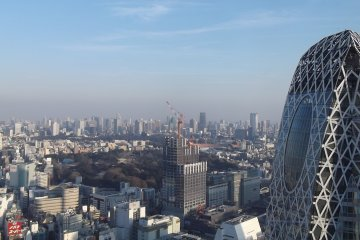 <p>Shinjuku Park, some construction, and Cocoon Tower</p>