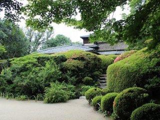 詩仙堂の庭園は唐様庭園と呼ばれる。南面の斜面に広がるこの庭園は丈山の好みであった
