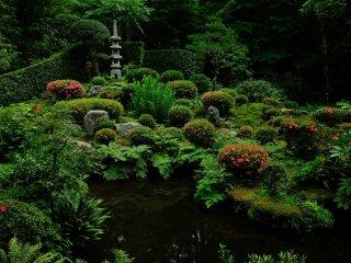 聚碧園をいつまでも眺める。頭の中にはほとんど何もない。ただじっと眺めていたい