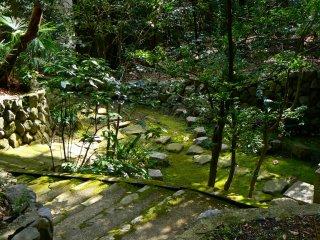 A green and peaceful garden