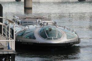 The Hotaluna cruise boat.