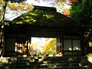 茅葺で数奇屋造りの山門