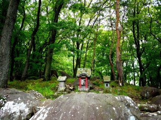 A small shrine, no bigger than most O-jizo shrines, stands among the trees at the entrance