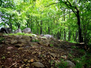 A small ridge with tumbled rocks