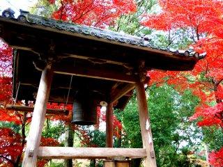 종 탑 뒤에 붉게 물든 단풍