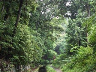 疏水沿いを歩くことができる。この界隈もメジャーな観光コースではないため、とても落ち着いた散策が楽しめる