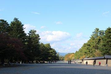 晩秋の京都御苑を歩く